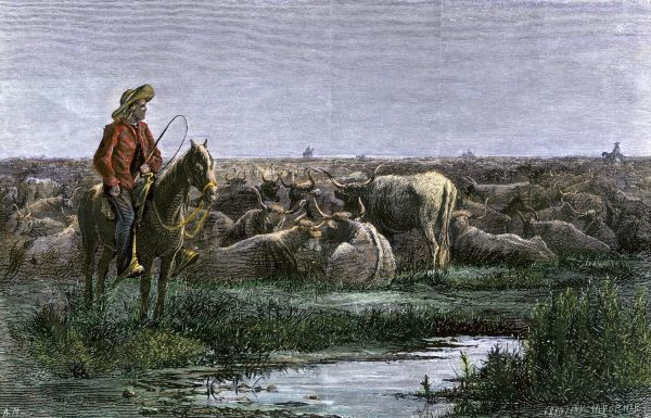 Cowboys guarding the herd at night during a Texas to Kansas cattle drive 1800s Hand-colored woodcut of a 19th-century illustration