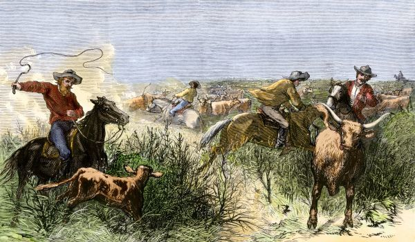 Cowboys cutting out cattle to drive a herd from Texas to Kansas, 1870s. Hand-colored woodcut of a 19th-century illustration