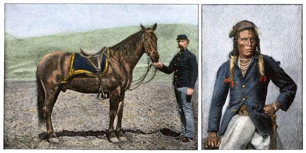 "Horse ""Comanche"" and Custer's scout Curley, the only US Army survivors of the Battle of Little Bighorn, 1876. Hand-colored woodcut reproduction of a photograph"