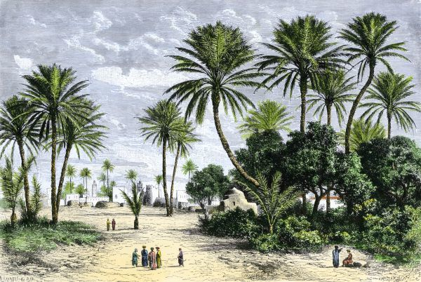 Oasis of Gafsa in Tunisia, North Africa. Hand-colored woodcut of a 19th-century illustration