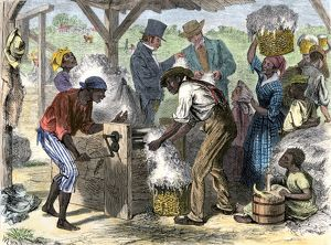 Cotton gin in use by African-American slaves in the South