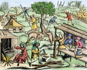 Country life in medieval Europe