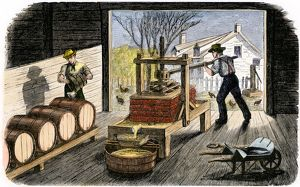 Farmers making apple cider, 1800s