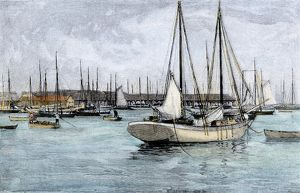 Key West fishing fleet, 1890s