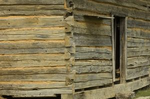 Log cabin, Shiloh, Tennessee
