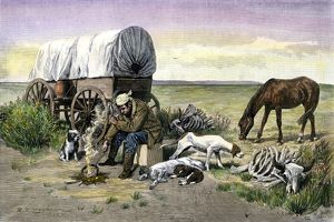 Lonely covered wagon camp on the prairie