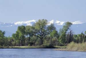 Madison River near its junction to form the Missouri River, Montana