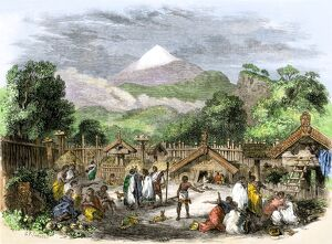 Maori village in New Zealand, 1800s