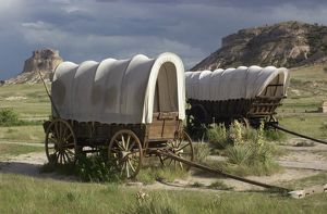 Oregon Trail covered wagons