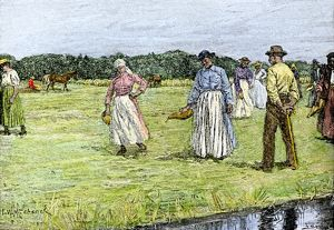 Slaves planting rice in North Carolina, 1800s