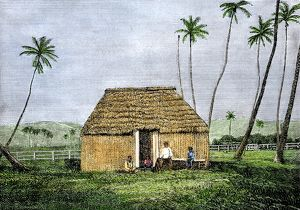 Traditional Hawaiian home, 1800s